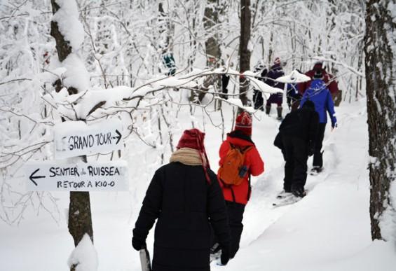 110--Zen-Walk-on-Snowshoes