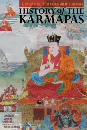 History of the Karmapas book cover