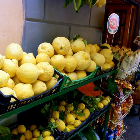 The famous lemons of Sorrento.