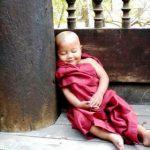 Little Buddha Feat