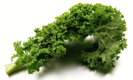 Curly-kale-001
