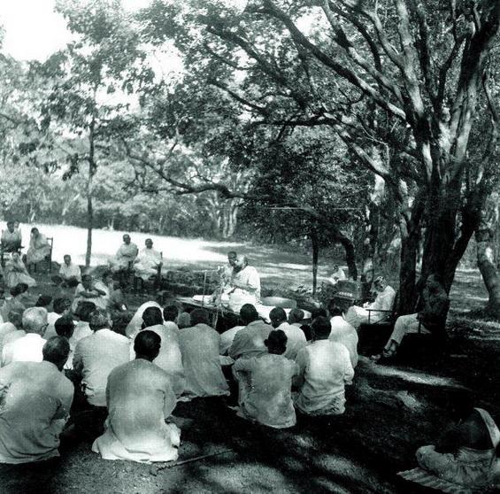 Osho Camp