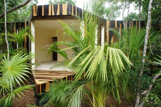 Hive studio