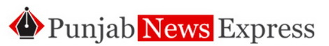 Punjab News Express logo
