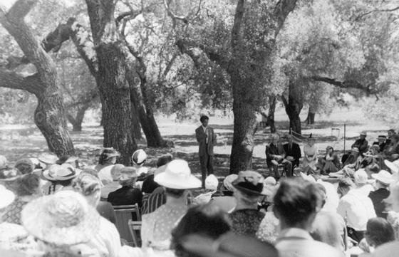Krishnamurti Oak Grove