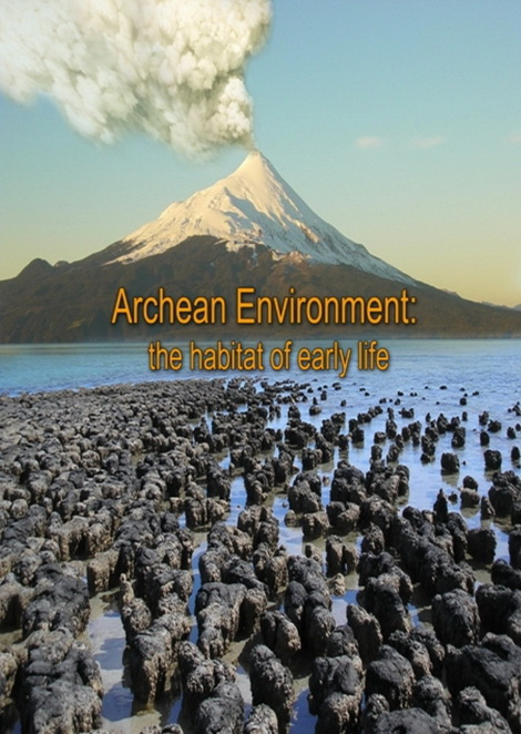 Archean environment