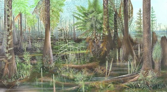 Carboniferous forest