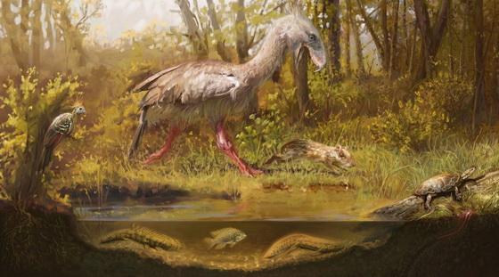 Eocene ecosystem