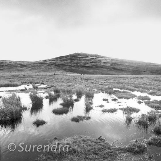 Black Down, Dartmoor, UK