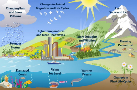 Guide Global Climate Change