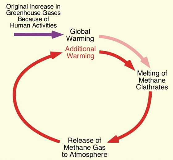 Increase Greenhouse Gases