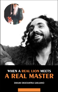 Real Lion