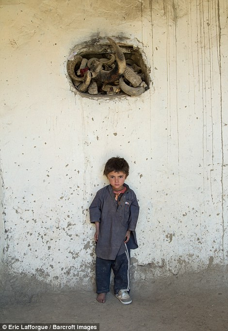 Afghan boy with one shoe on stands below ibex horns used during Ramadan and Nowruz celebrations