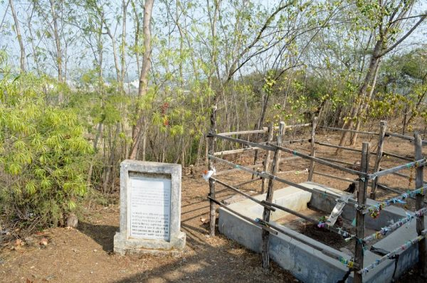 Where Osho fell off the tree, in Sagar