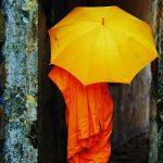 monks-umbrella-feat