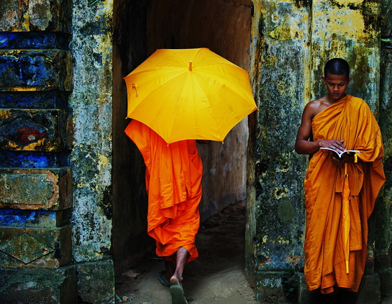 monks-umbrella