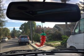 chili-on-rearview-mirror
