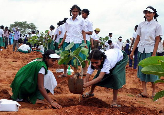 school-children-planting