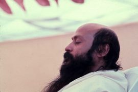 Mount Abu Osho camp 2