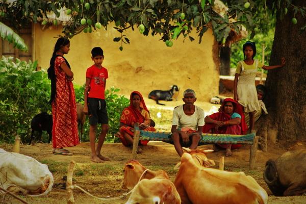 Rural India credit Tripti