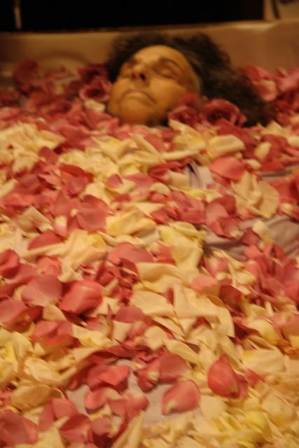 920 Hanya under rose petals