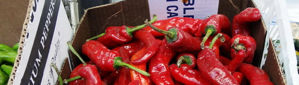 Peppers 1a