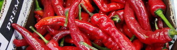 Peppers 1b