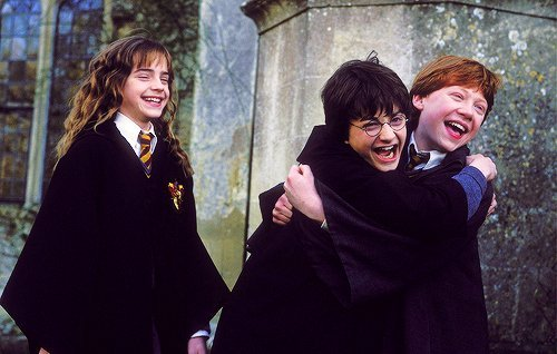 040 the trio harry potter