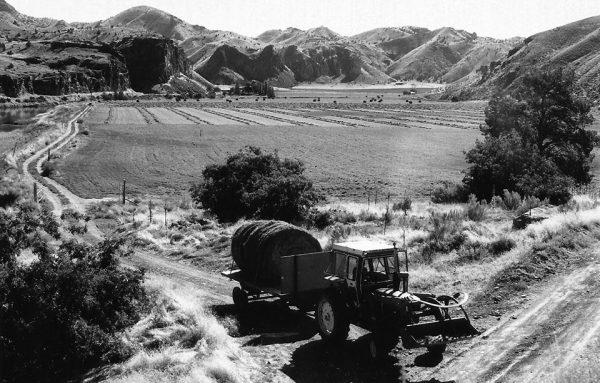 Harvesting fields