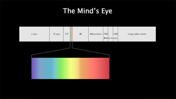 light is a vibration of electromagnetic field