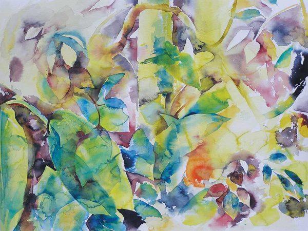 Plants in Pune, 76 x 56 cm, Watercolour