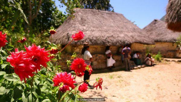 Arhuaco community