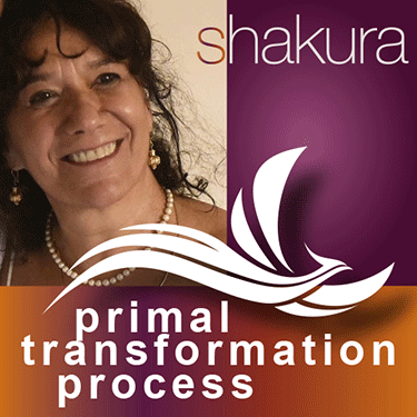 Primal Transformation Process with Shakura