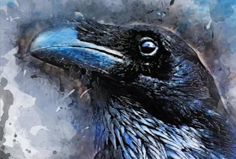 Crow by JBJart