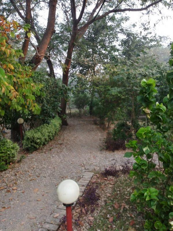 Gardens Osho Jetban