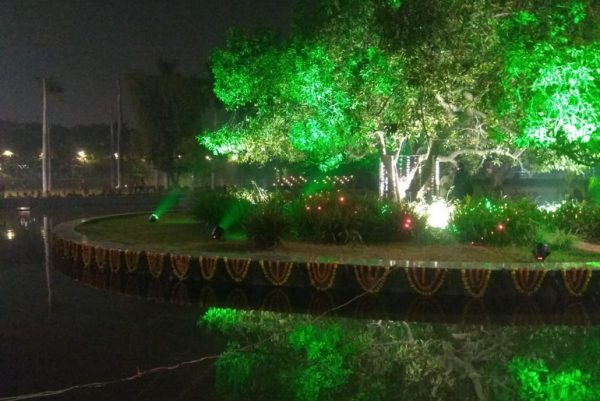 Maulshree Tree at night