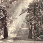Lao Tzu Gate, Osho Ashram India