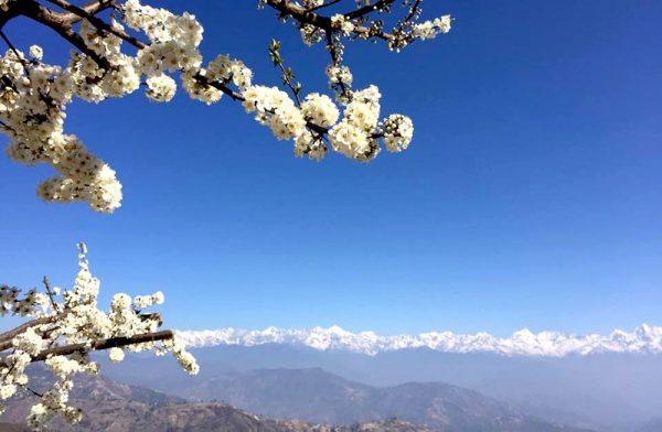 View from Nagarkot