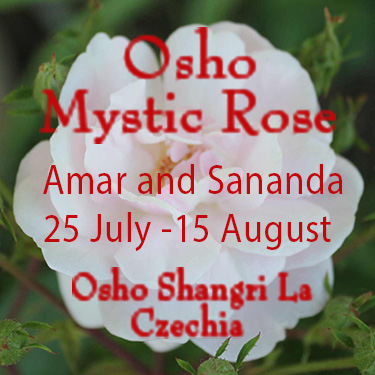 Mystic Rose with Amar and Sananda, 25 July - 5 August 2020