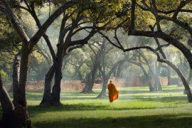 Monk walking