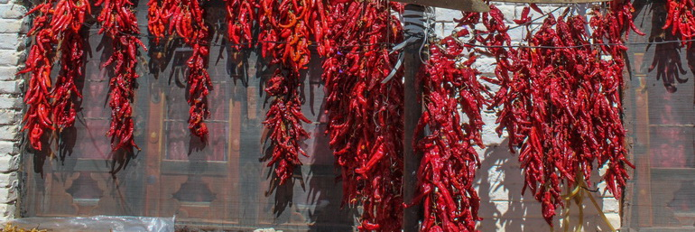 Chillies hanging on wall