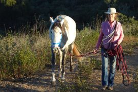 Nayana walking with one of her lovely Lusitanos