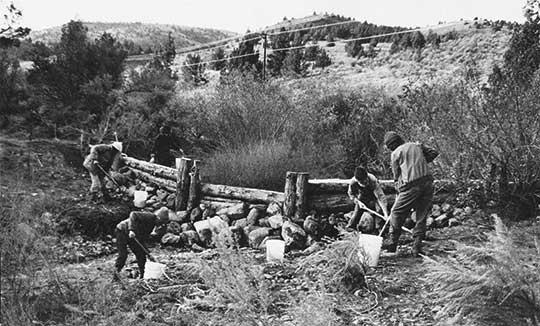 River bank restauration on Rancho Rajneesh