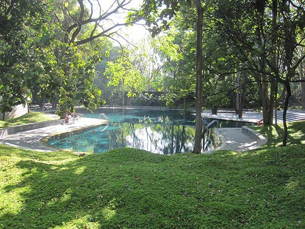 The pool at the Osho Meditation Resort, Pune