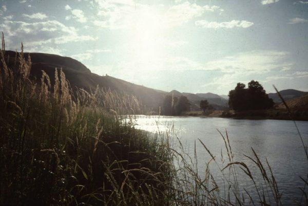 Radha River