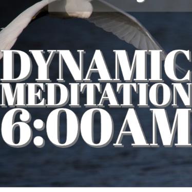 Dynamic 6am Nirvana
