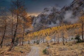 Valley in Autumn by Darpan