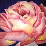 Rose by Roshani
