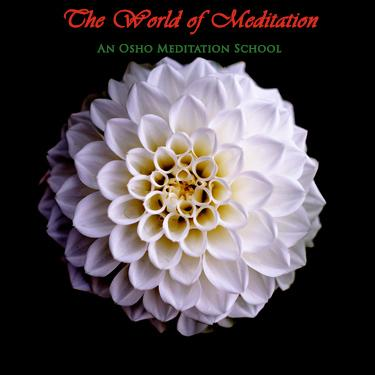 World of Meditation, Seattle