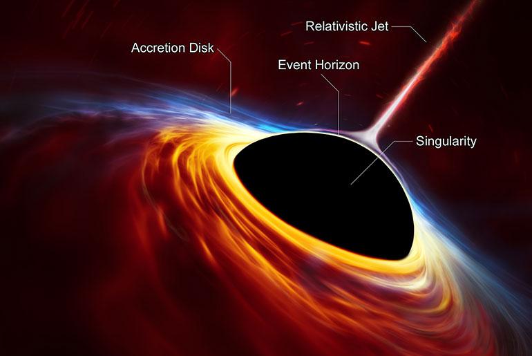 Anatomy of a black hole